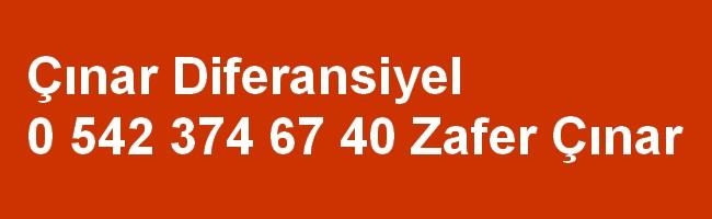 Defransiyelci Şaşmaz Ankara