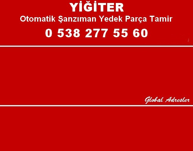 OTO OTOMATİK ŞANZIMAN Ankara BeyinTamiri
