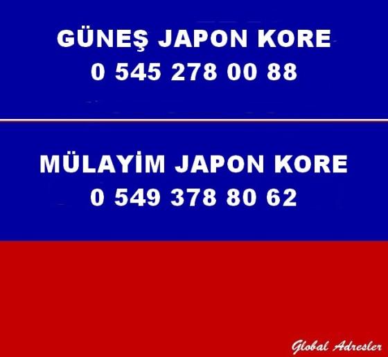 Japon Kore Yedek Parça